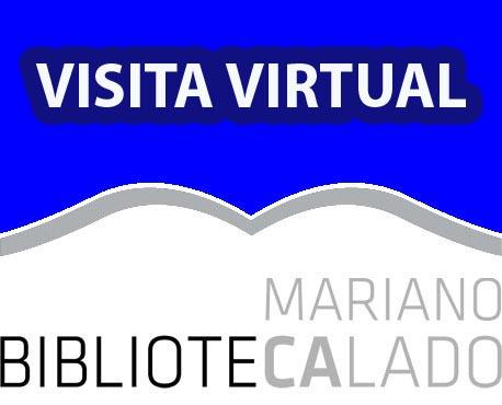 visita virtual biblioteca.jpg